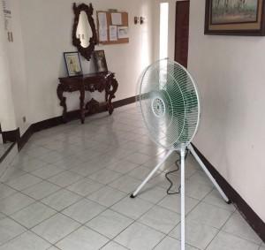リビングルームには大型サイズの扇風機が!!